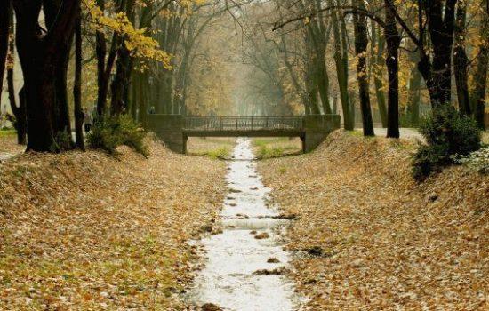 jesen-u-vrnjackoj-banji-4