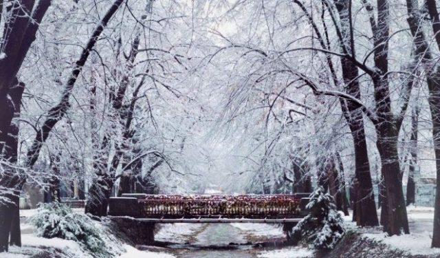 vila splendor new year 2